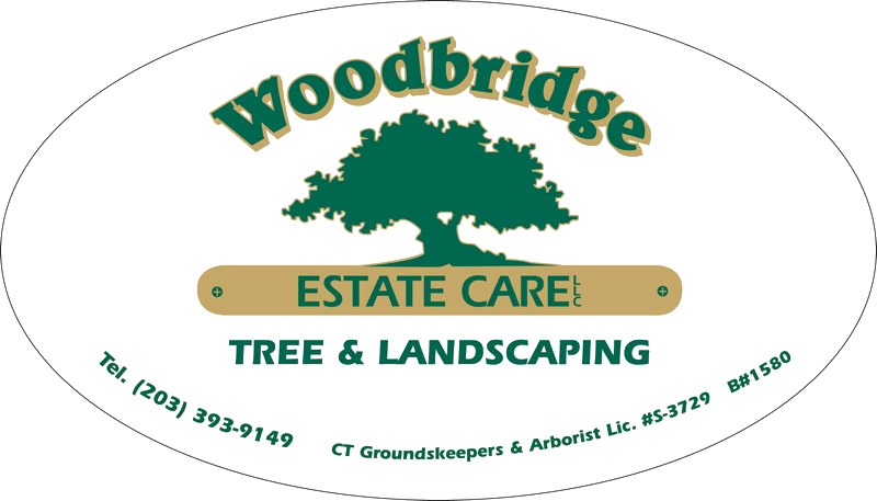 Woodbridge Estate Care